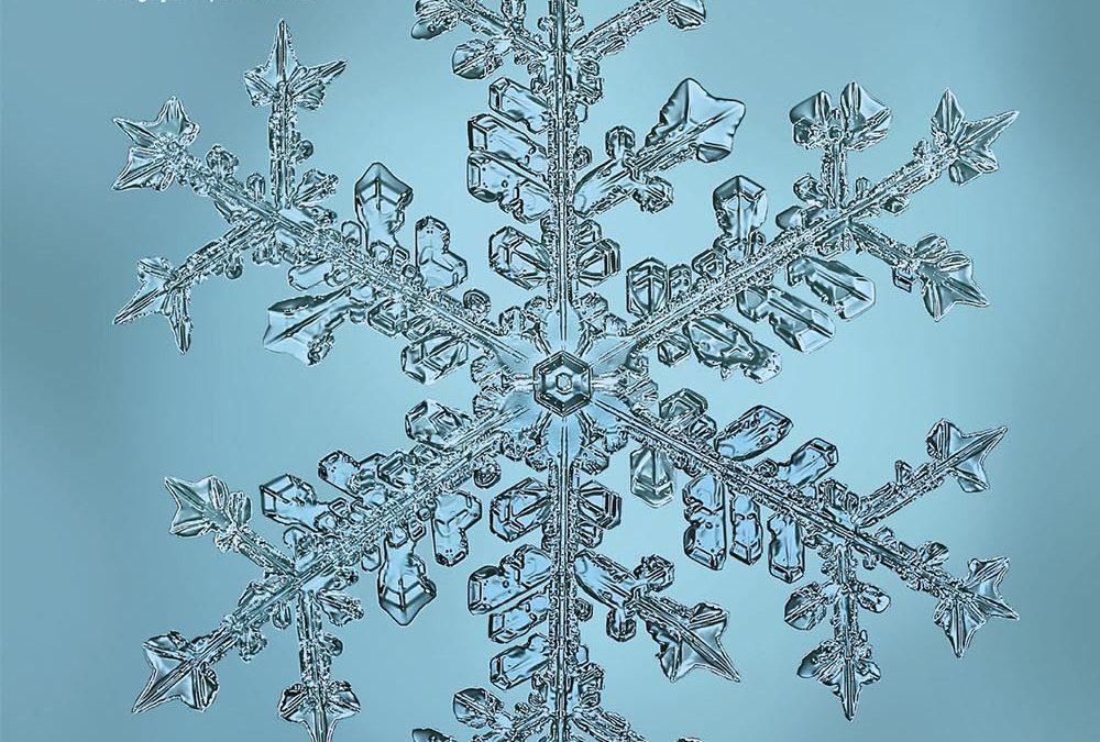 Let's Take a Hike: A Christmas Night Snowflake
