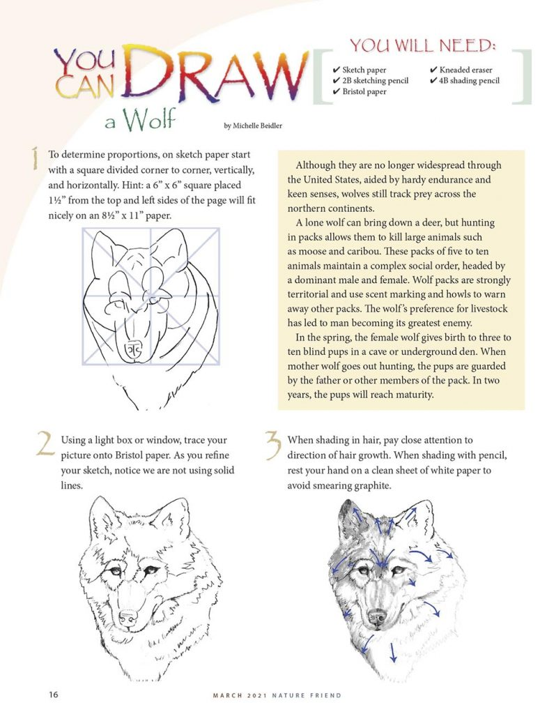 You Can Draw a Wolf