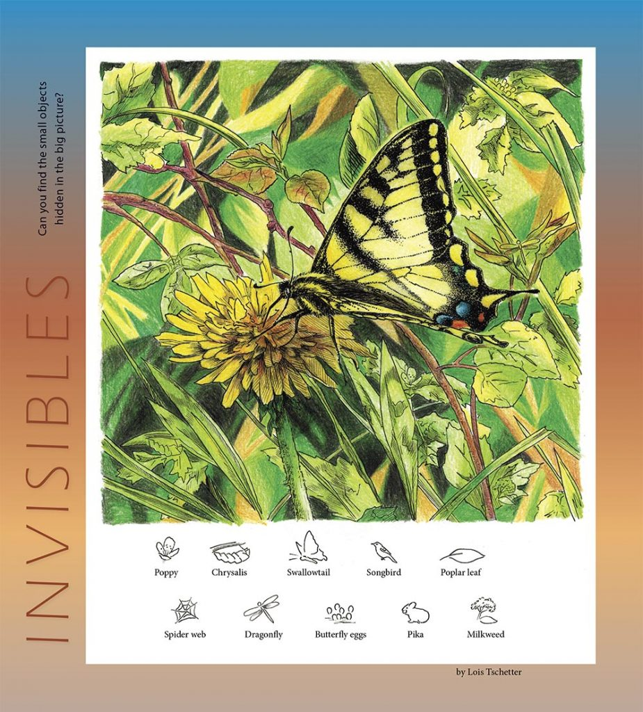 Invisibles, hidden object puzzle, tiger swallowtail