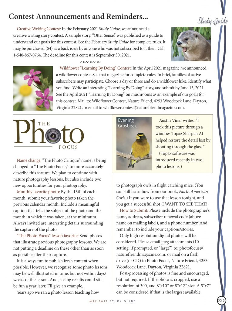 Photo contests, the photo focus announcements, Wildflower contest, Creative Writing Contest