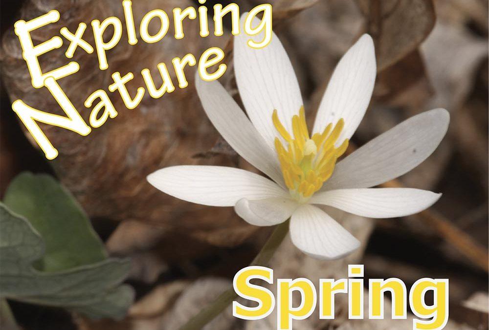 Exploring Nature, Spring