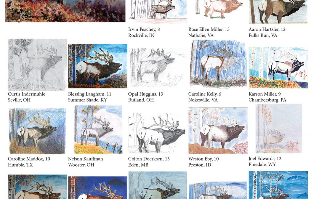 You Can Draw an Elk Submissions