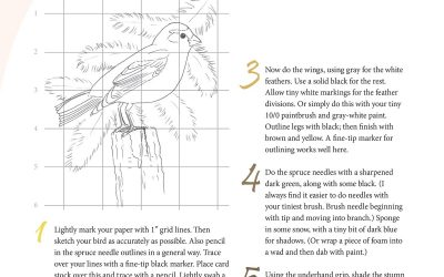 You Can Draw an Evening Grosbeak Lesson