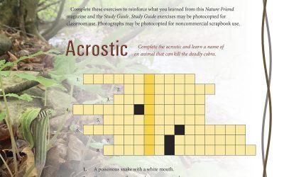 Study Guide Puzzles, April 2021