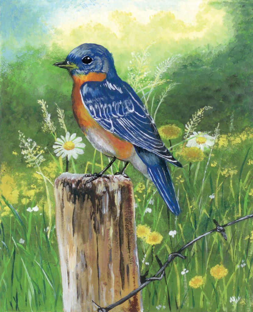 Eastern Bluebird painting,