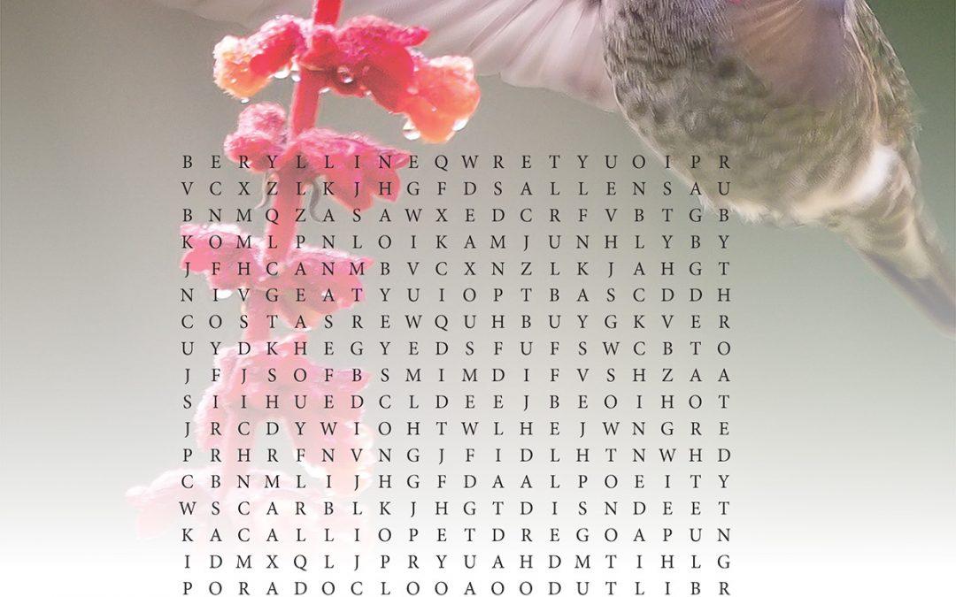 Hummingbird Word Search, July 2021