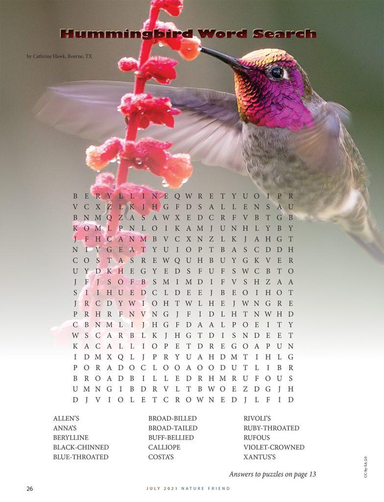 Hummingbird Word Search