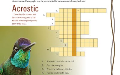 Study Guide Puzzles, July 2021