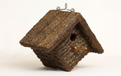 Learning By Doing, How to Build a Chickadee House