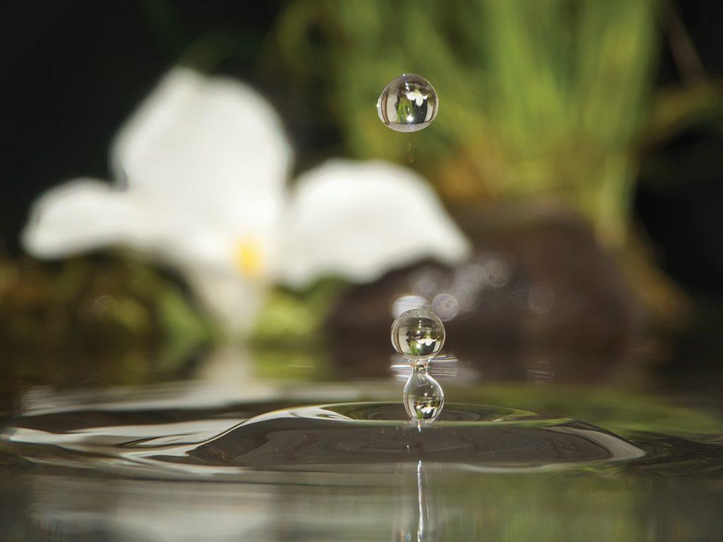 Water drop refraction