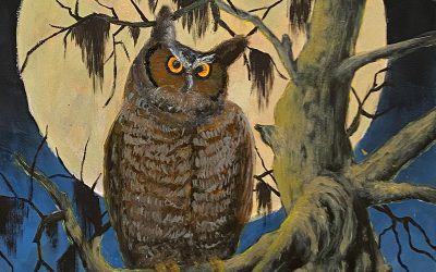 End of the Trail, October 2021: Great Horned Owl
